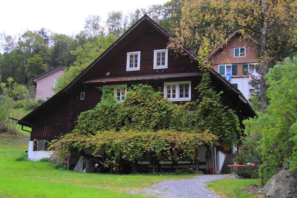 Chalet, Mountain Hut, Home, Switzerland, Ivy, Brown