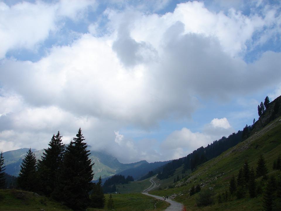 Switzerland, Mountain, Trees, Europe, Nature, Landscape