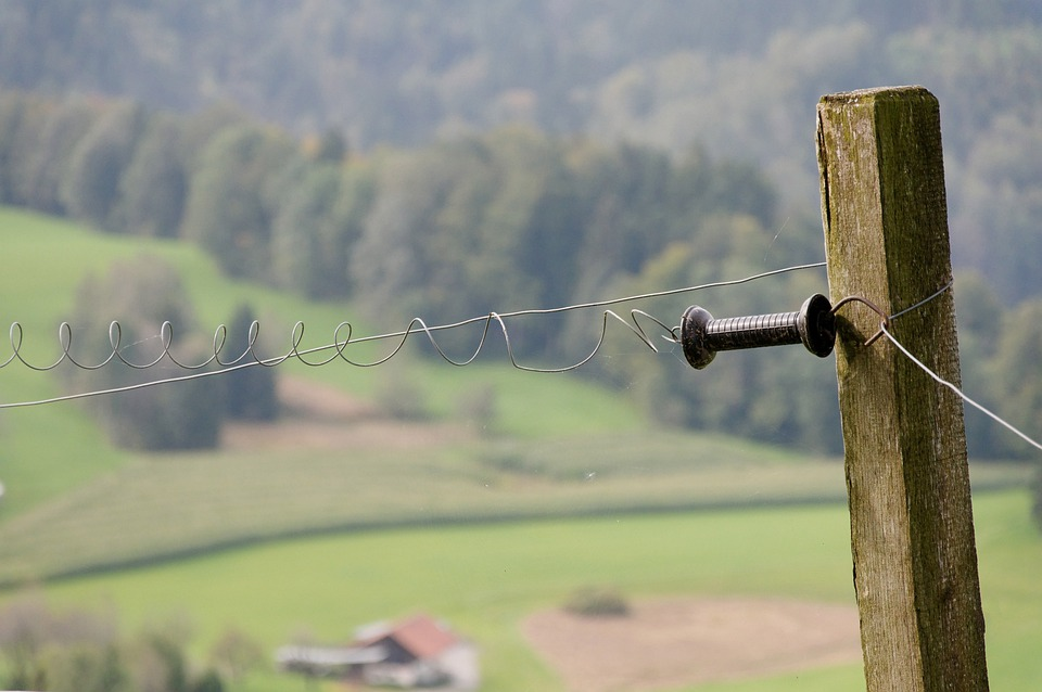 Pasture Fence, Electric Fence, Switzerland, Mountains