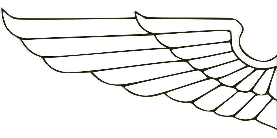 Wing, Heraldry, Symbol, Design, Emblem, Graphic