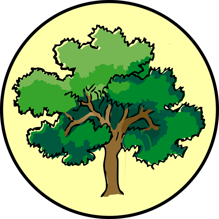Tree, Oak, Circle, Nature, Plant, Symbol, Timber, Bark