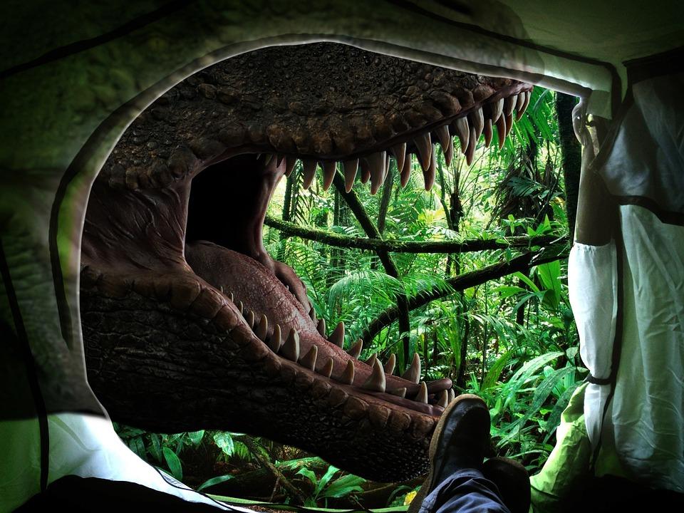 Nature, Dinosaur, T Rex, Dino, Prehistoric Times