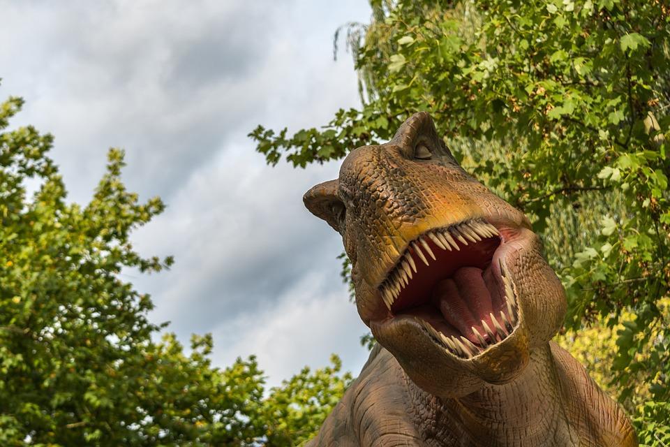 T Rex, Tyrannosaurus Rex, Dinosaur, Dino, Reptile