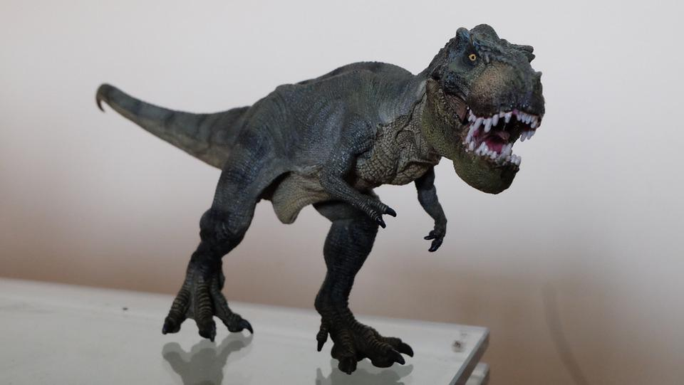Toy, Dinosaur, T-rex
