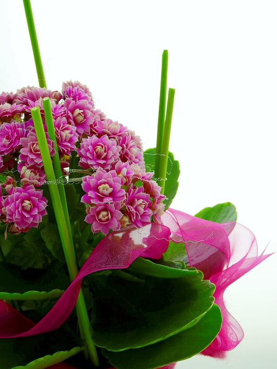 Flower, Arrangement, Deco, Table Decoration, Decoration