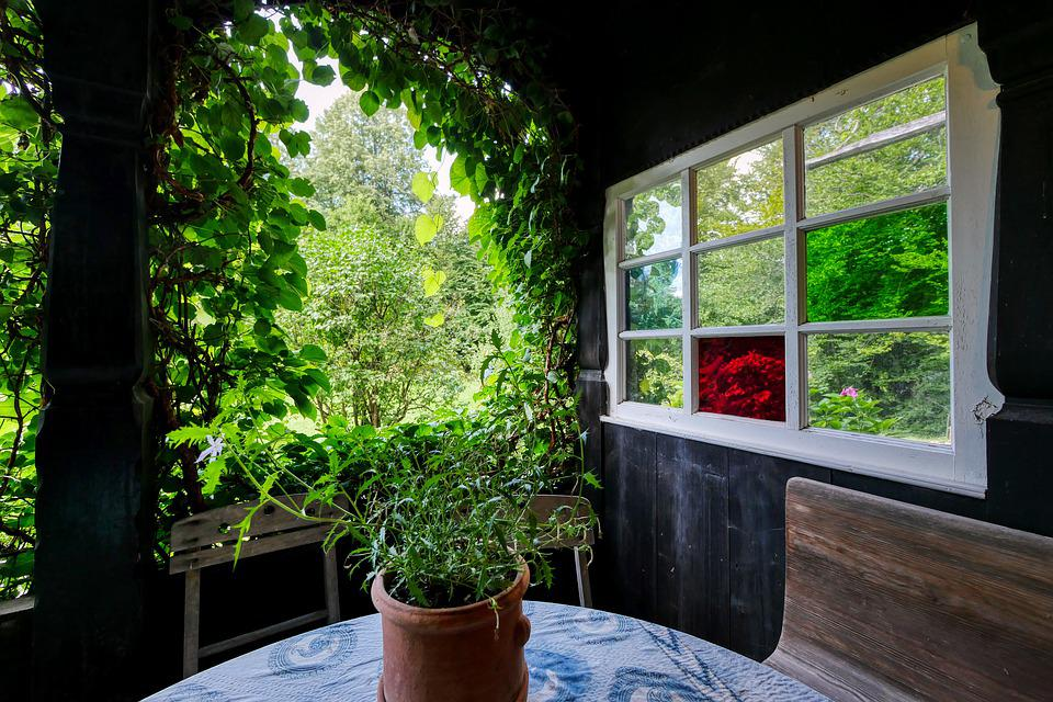Terrace, Front Yard, Garden Shed, Table, Wooden Bench