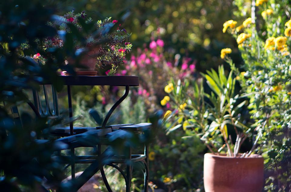 Garden, Light, In The Morning, Table, Chair, Flower