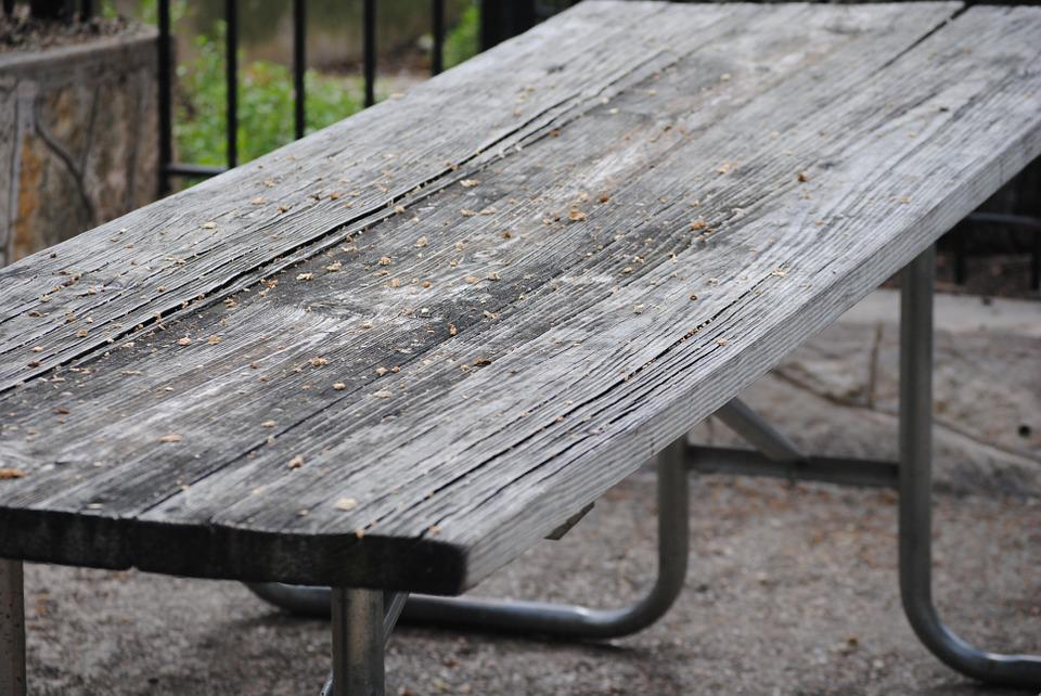 Picnic, Table, Bench, Nature, Green, Outdoor, Park