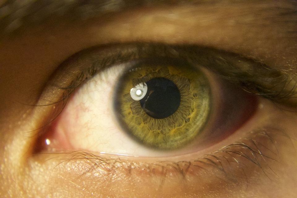 Eye, Green, Pupil, Iris, Tabs, Retina, Eyes