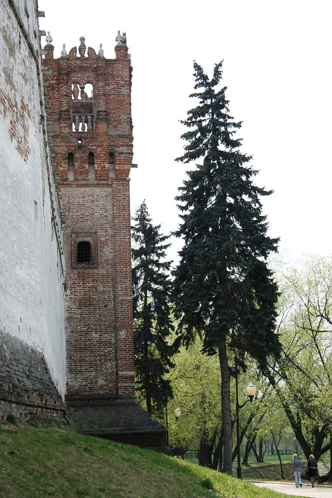Convent, Wall, Tall, Historic, Tower, White, Brown