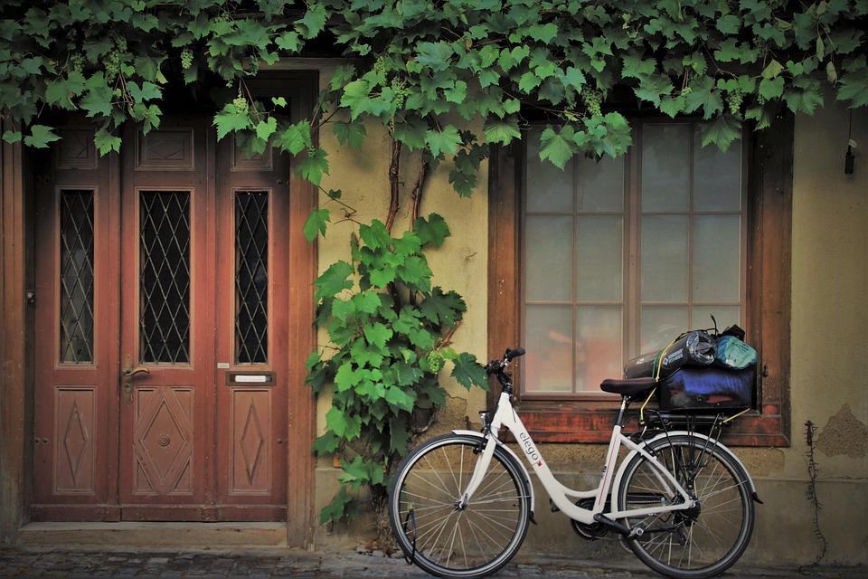 Target, Entrance, Bike, Wheel, Closed, Grapes