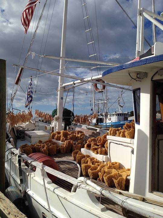 Tarpon Springs, Florida, Sponges, Boats