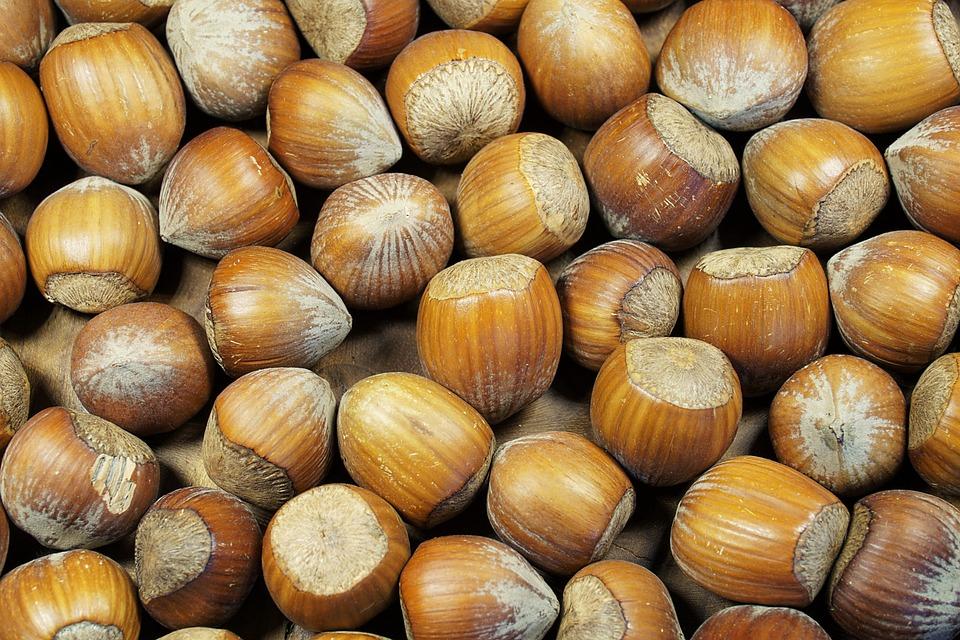 Hazelnut, Shell, Brown, Nuts, Food, Nut, Tasty, Eat
