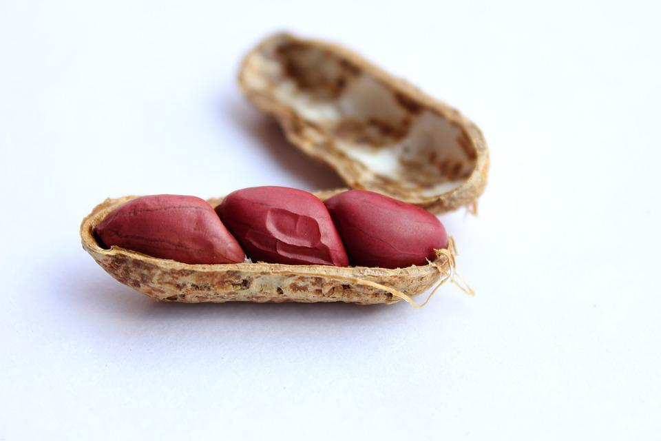 Peanuts, Cover, Nut, Healthy, Tasty, Food, Snack