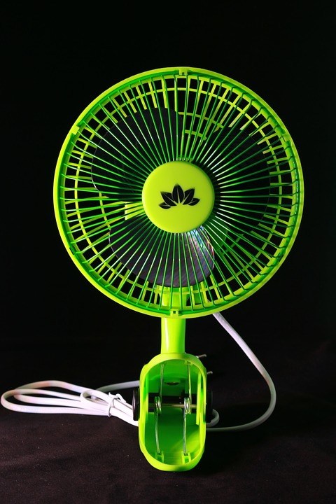 Team, Isolated, Fan, Green, Cultivation, Business