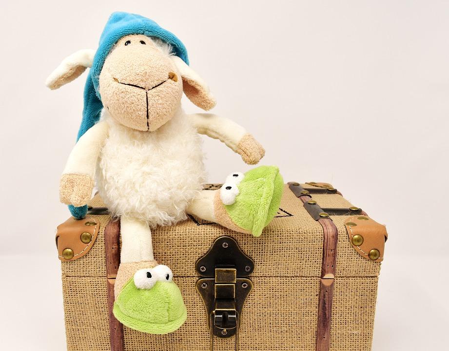 Sheep, Teddy Bear, Chest, Soft, Cute, Toys