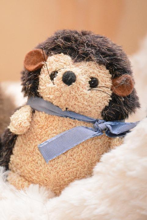 Hedgehog, Stuffed Animal, Teddy Bear, Cute