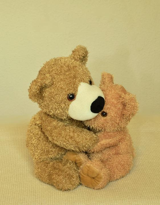 Teddy, Teddy Bear, Soft Toy, Stuffed Animals, Bears