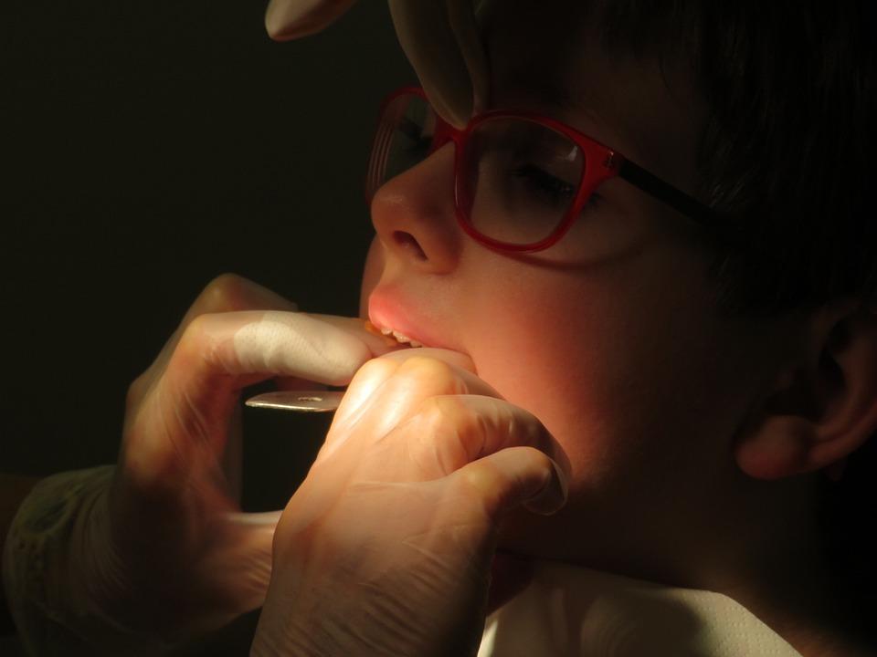 Tooth, Teeth, Dentition Correction, Dental Braces, Pine