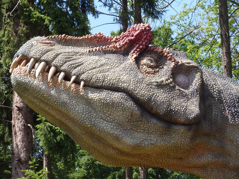 Dinosaur, Head, Teeth, Extinct, Maquette, Model