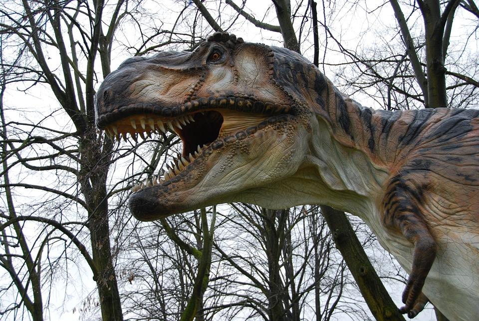 T-rex, Dinosaurs, Teeth, Monza Park