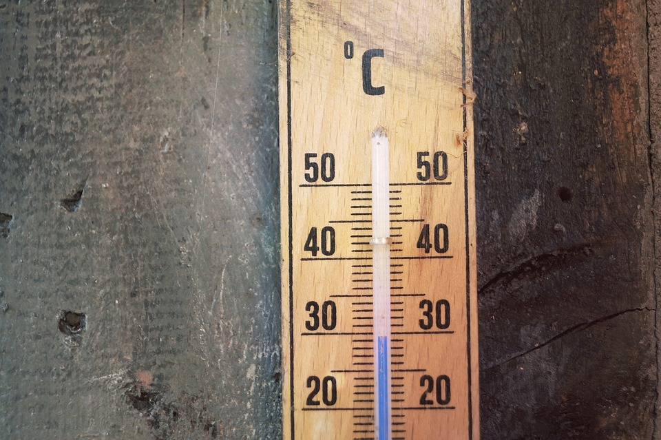 Thermometer, Temperature, Degrees Celsius, Scale