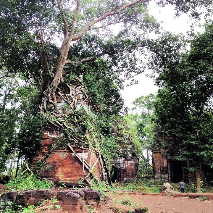 Siem Reap, Angkor Thom, Temple, Cambodia