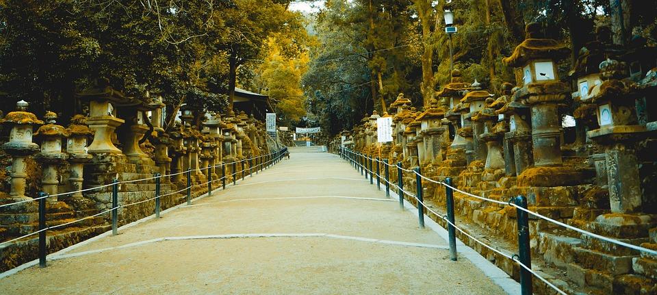 Kasuga Taisha, Temple, Kyoto, Shrine, Japan, Sacred