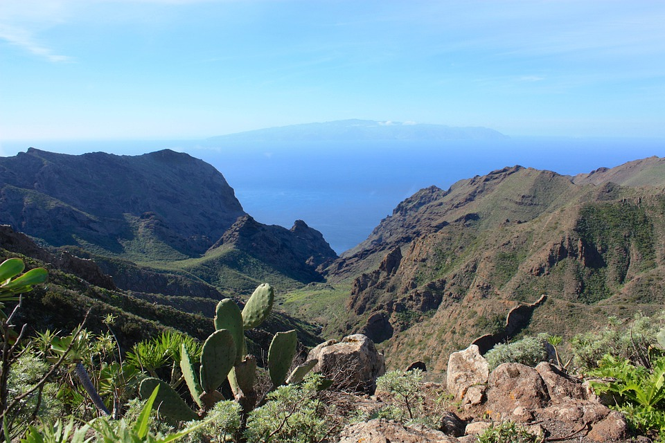La Reptiles, Canary Islands, Island, Tenerife, Holiday