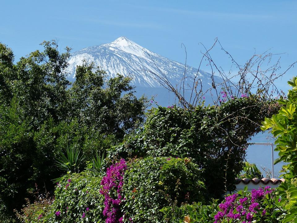 Tenerife, Canary Islands, Landscape, Nature, Spain