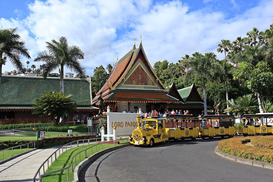 Train, The Queue, Module, Rails, Loro Parque, Tenerife