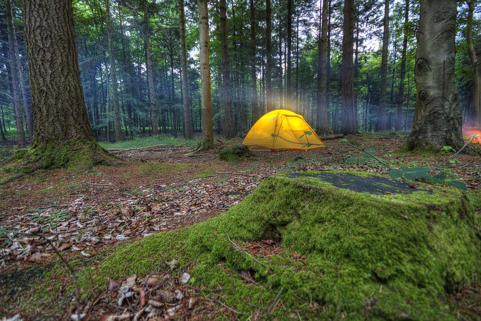 Camping, Tent, Wilderness, Camp, Nature, Recreation