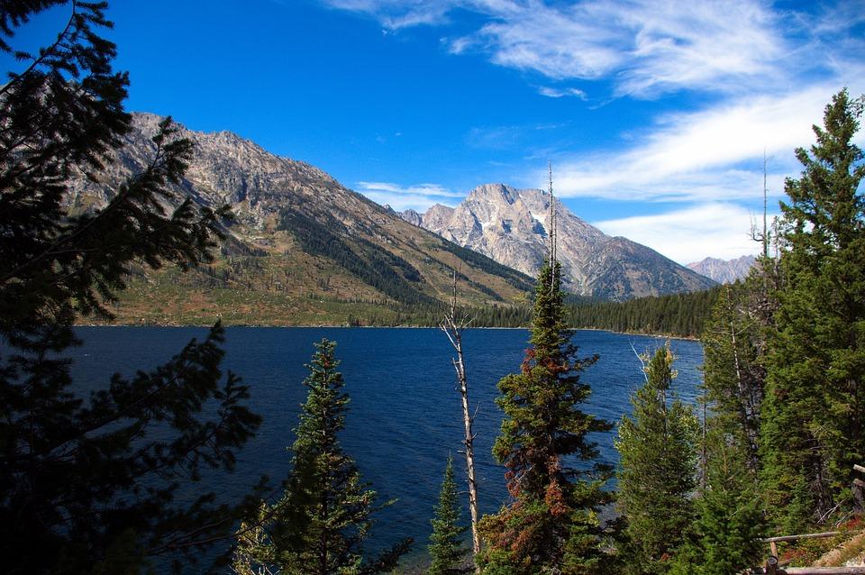 Jenny Lake Vista, Lake, Mountains, Grand, Teton