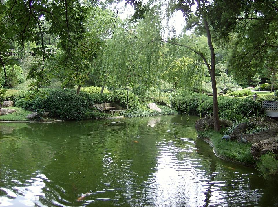 Pond, Botanic Gardens, Fort Worth, Texas, Green