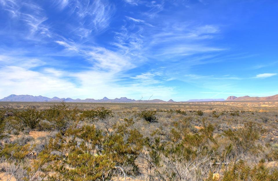 Big Bend National Park, Texas, Usa, Desert, Landscape