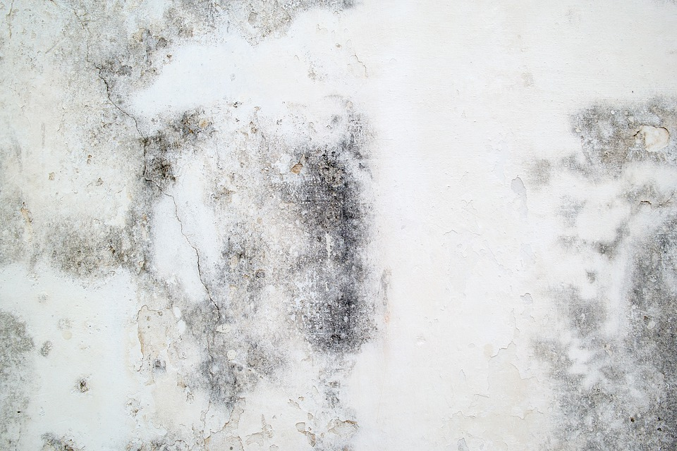 Concrete, Wall, Texture, Cement, Stone, Architecture