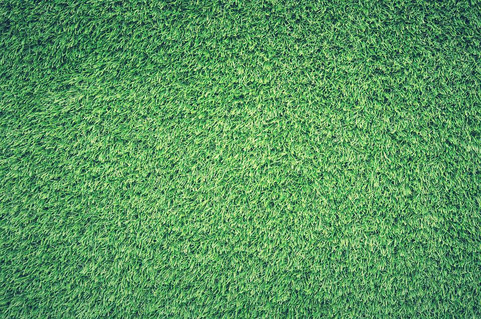 Field, Grass, Green, Lawn, Texture