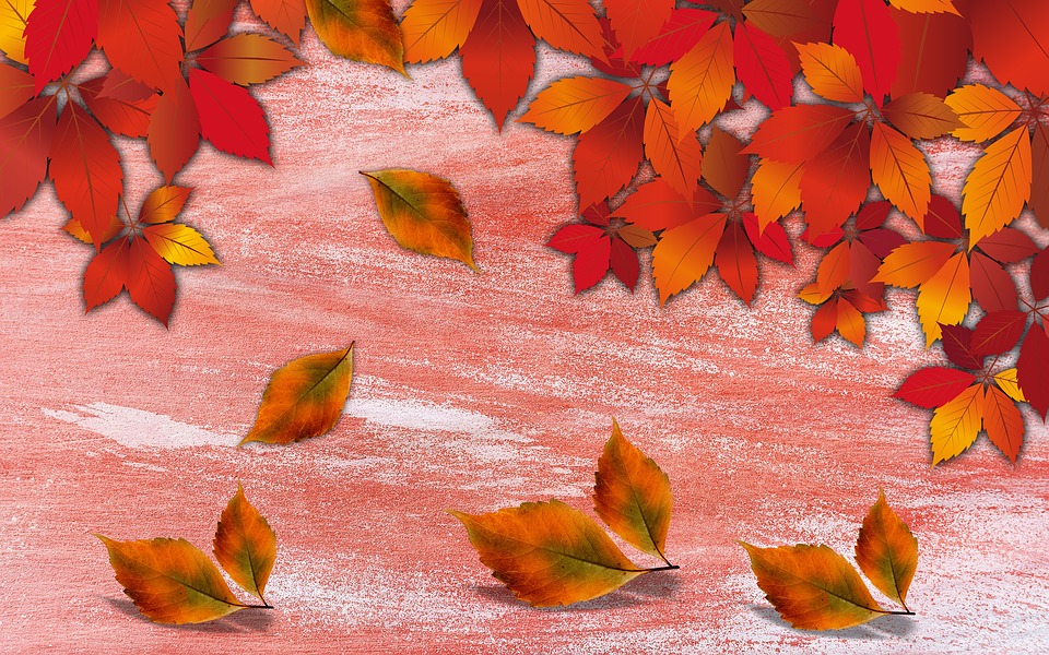 Background, Texture, Background Autumn, Autumn, Leaves