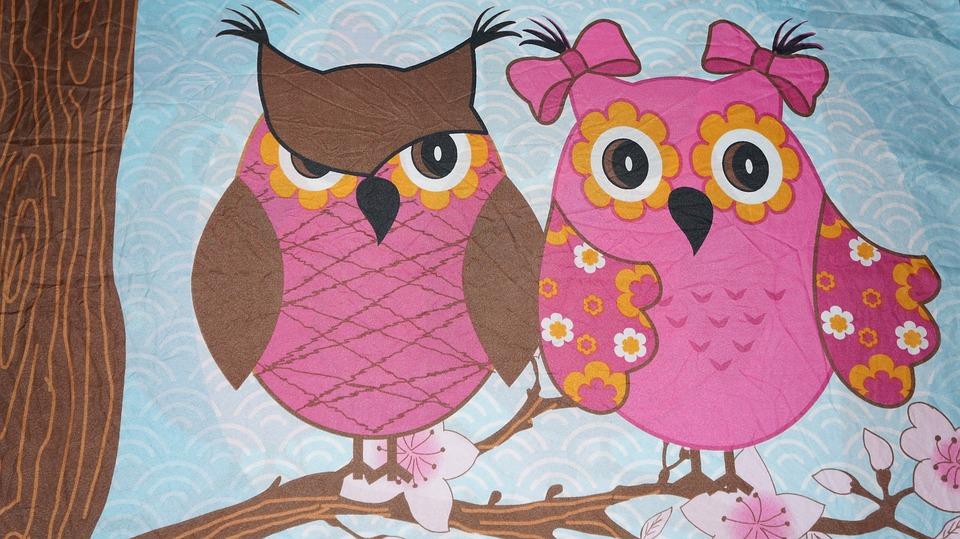 Background, Texture, Owls, Animals