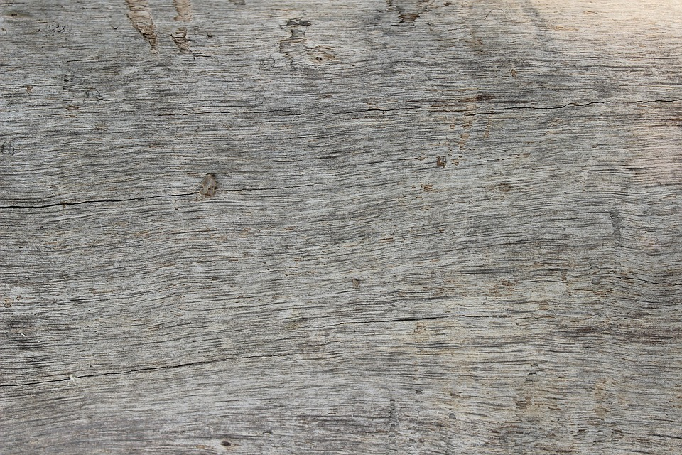 Wood, Background, Texture, Neutral, Rustic