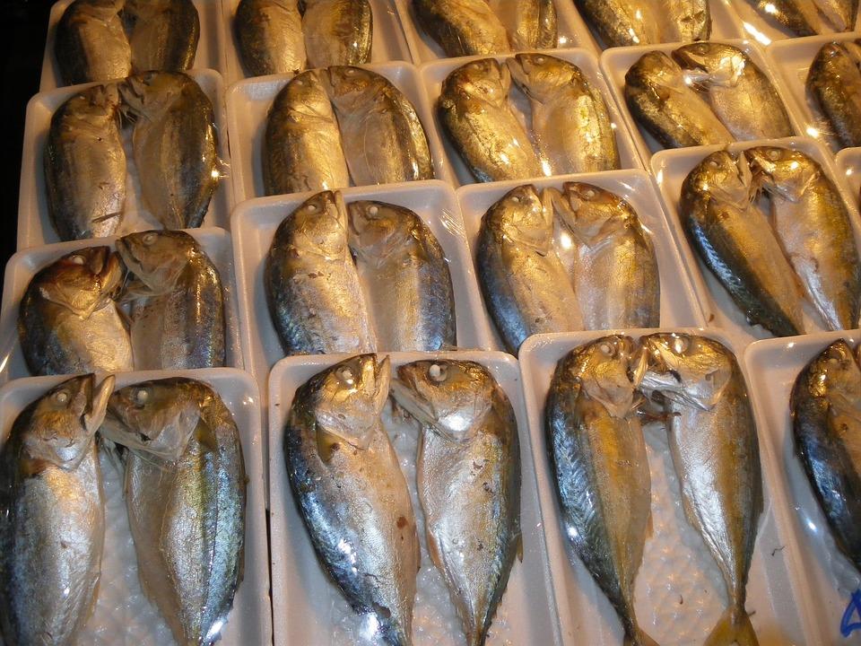 Fish, Market, Thailand