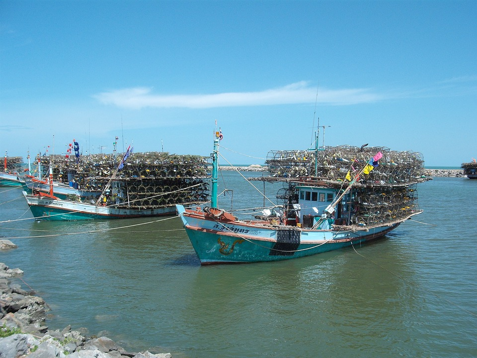 Fishing Boats, Thailand, Sea, Water