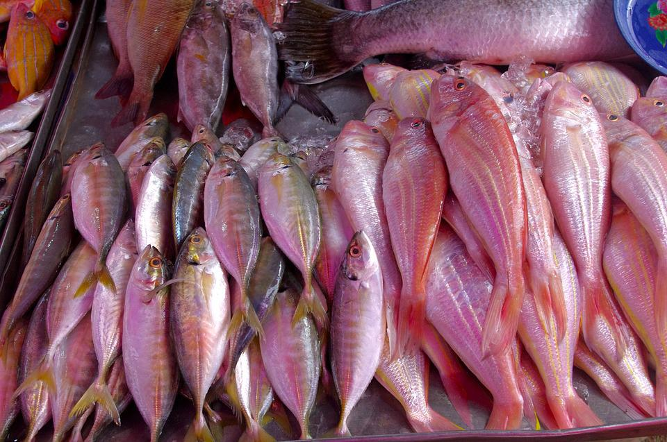 Thailand-market, Fish, Seafood, Luxury, Fish Business
