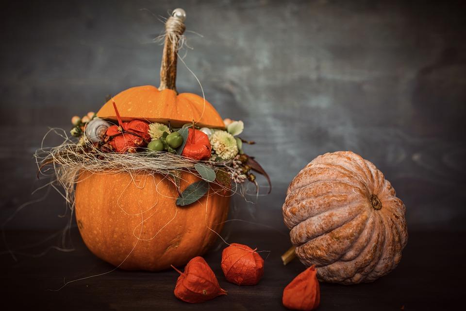 Pumpkins, Still Life, Autumn, Halloween, Thanksgiving
