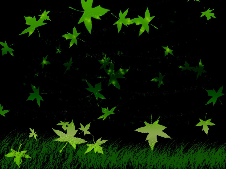 Foliage, Grass, Black, The Background, Texture, Green