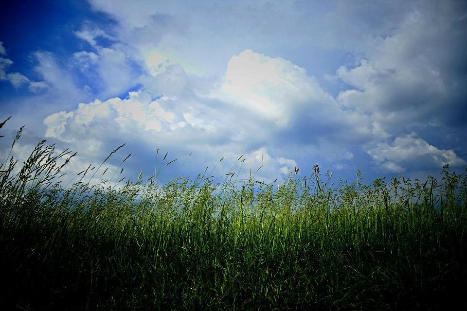 The Clouds, Meadow, Grass, Nature, Sky, Blue Sky, Storm