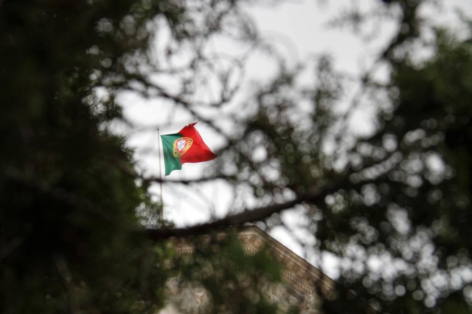 The Flag, Portugal, Tree, Ramos, Flag, The Corners