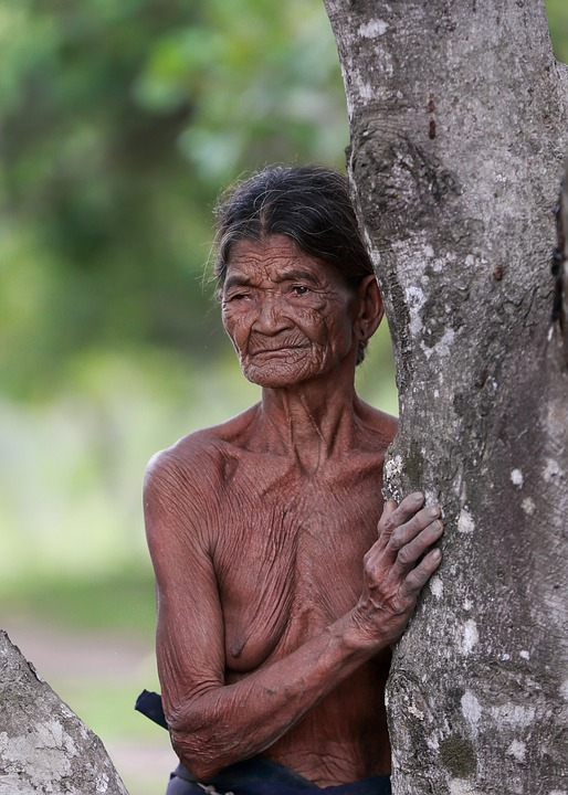 Portrait, Old People, Woman, Female, The Dry Tree