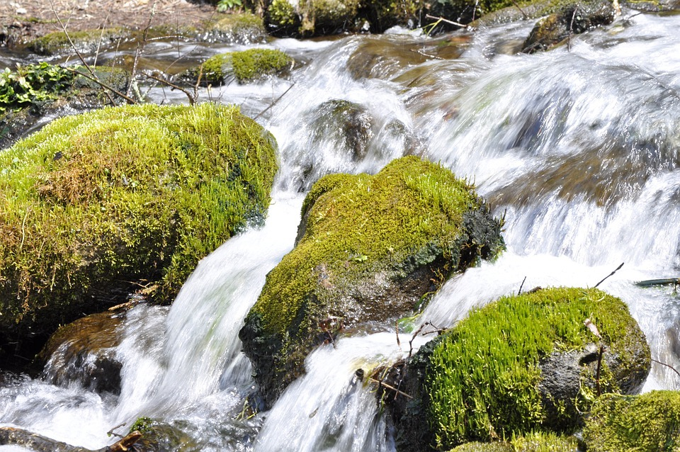 The Flow Of The River, Natural, Upstream