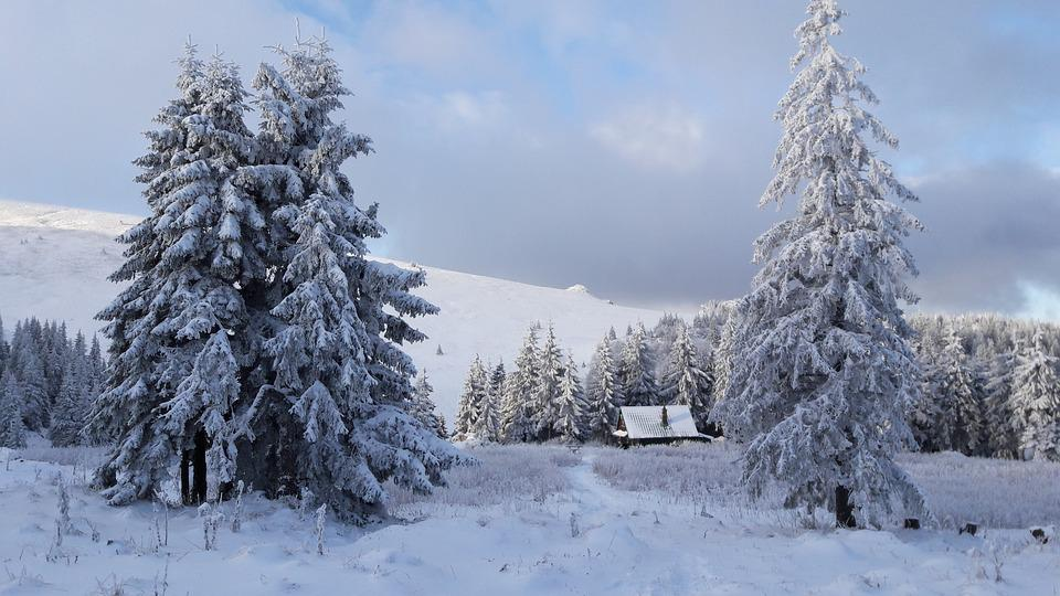 The Little Cottage, Cottage, Chalet, Loneliness